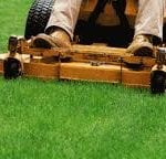 Residential Lawn Care, Commercial Lawn Care